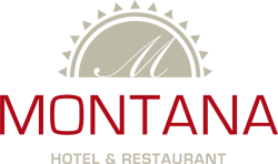 montana-logo